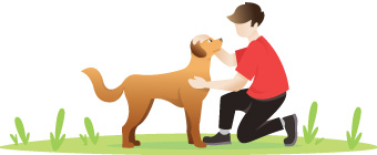 Your pet care business can rest assured that pets are not contagious when it comes to COVID-19.