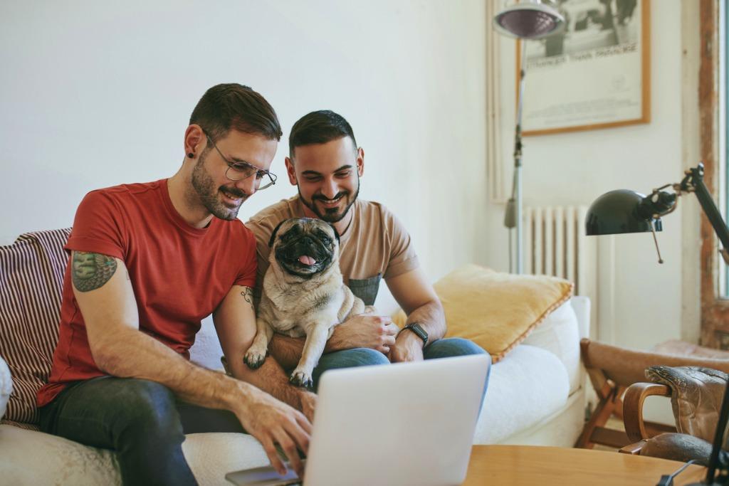 Dog Kennel Software