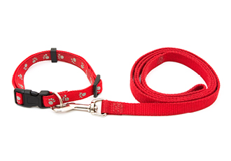 Remind your customers of your brand during their morning walk by designing leashes and collars for your next pet business merchandise idea.