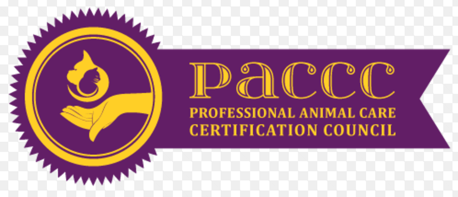 Explore the top training and certificate programs for pet care professionals.