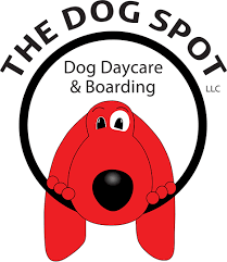 The Dog Spot relies on Gingr's dog daycare software.