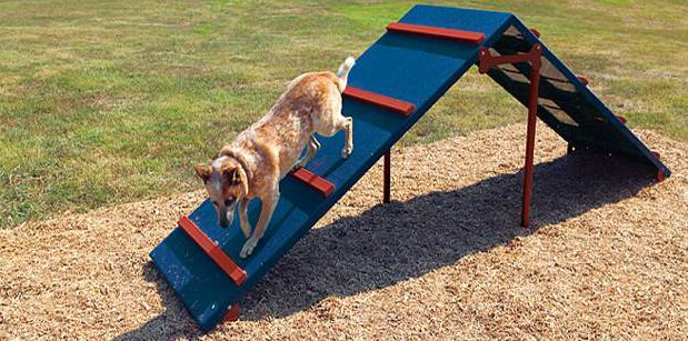 Dog Daycare Playground Equipment