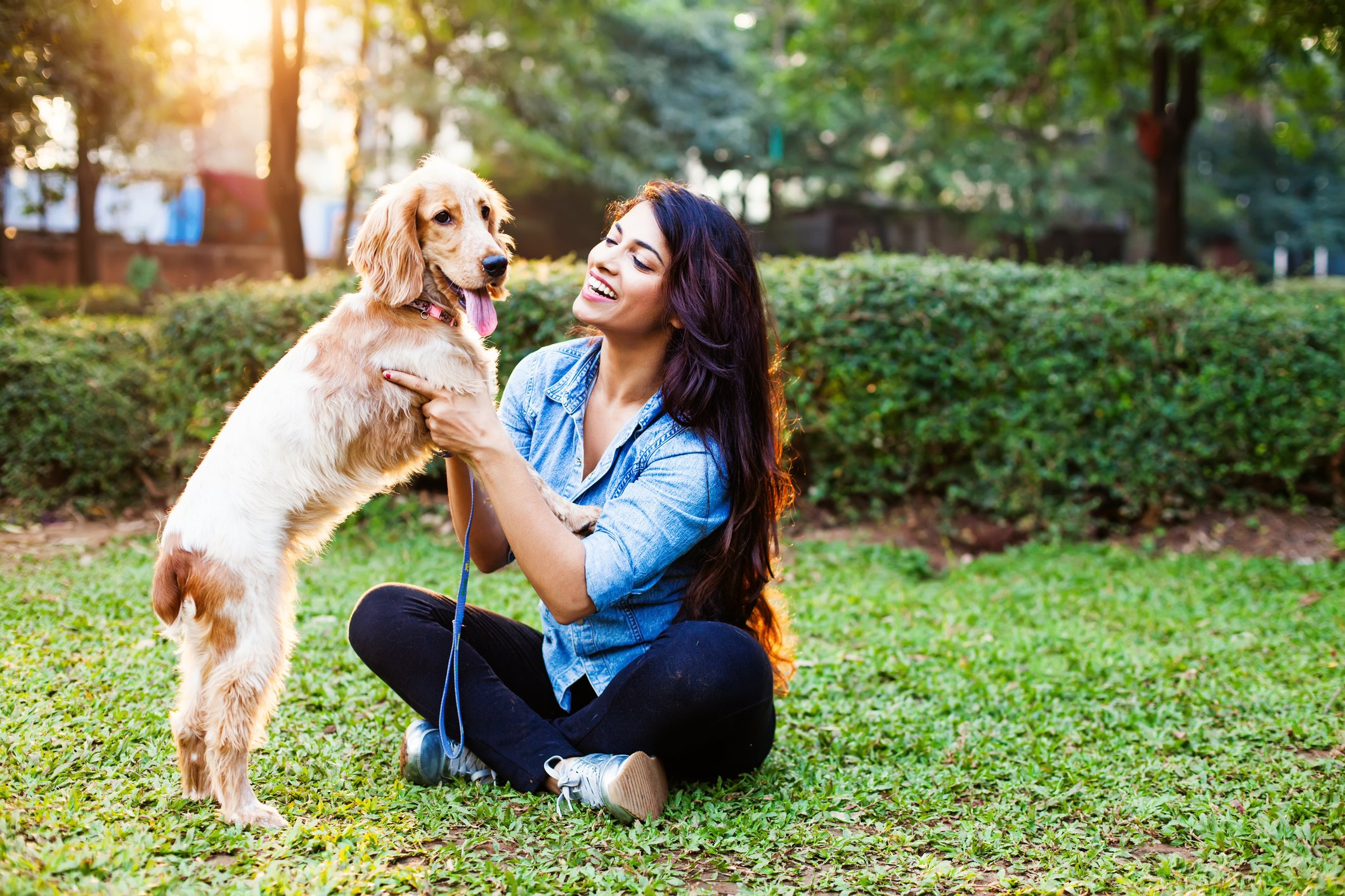 Customers say nothing but Gingr comes close to meeting their pet business software needs.